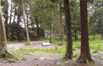 安土城の見所⑥本丸跡